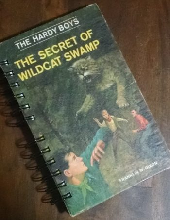 The Secret of Wildcat Swamp Book Journal