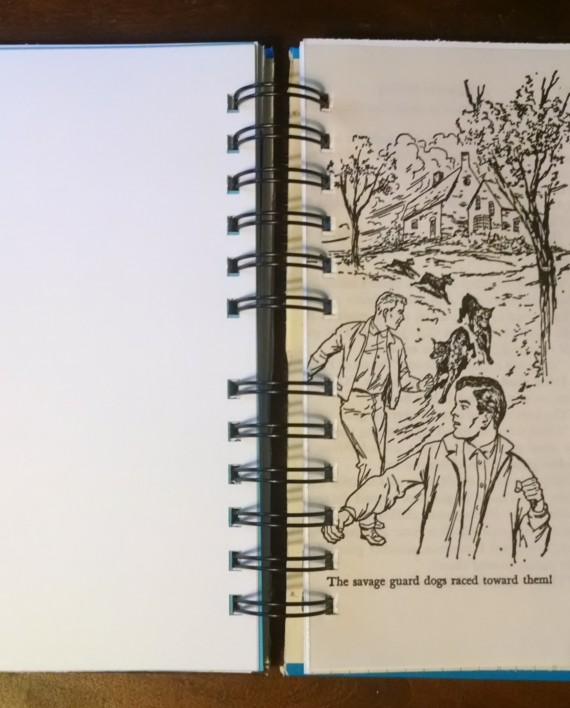 A Figure in Hiding, The Hardy Boys, Recycled Book Journal, Interior 2