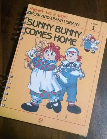 Sunny Bunny Comes Home Book Journal