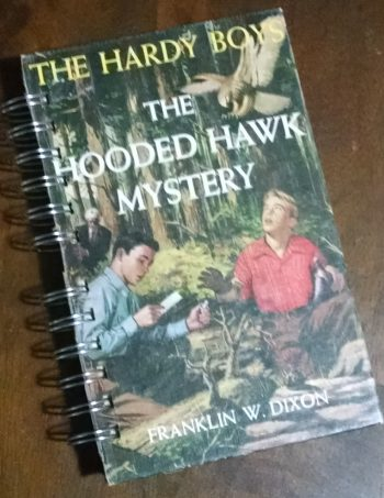 The Hooded Hawk Mystery Recycled Book Journal