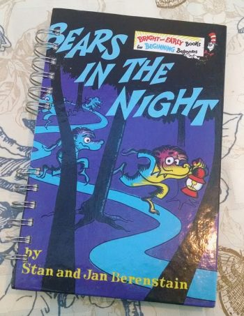 Bears in the Night Book Journal
