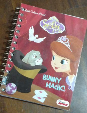 Bunny Magic Book Journal