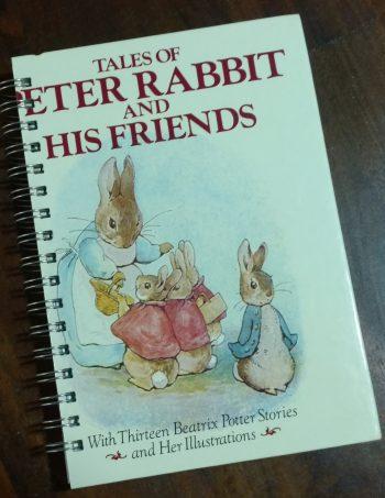 Peter Rabbit Book Journal