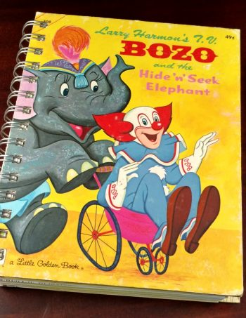 Bozo and the Hide N Seek Book Journal