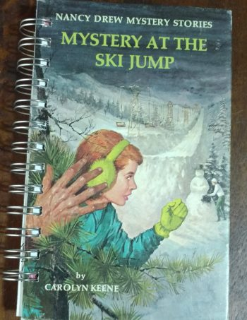 Mystery at the Ski Jump Book Journal